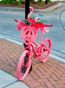 sarasota19-love bike