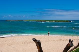 Aloha Hawaii 04